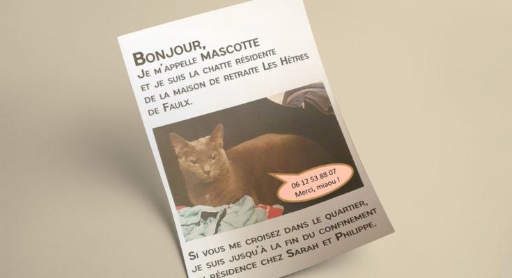 Le chat Mascotte
