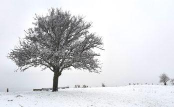 Amance sous la neige - 2020